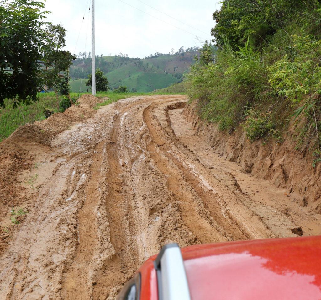 New Pathways - Muddy Tracks